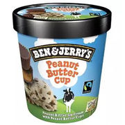 Glace Ben & Jerry Peanut butter cup