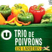 Trio de poivrons U